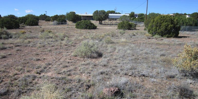 201-42-191B property view from road east end